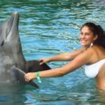 Dolphin Cove Park (1 Person)
