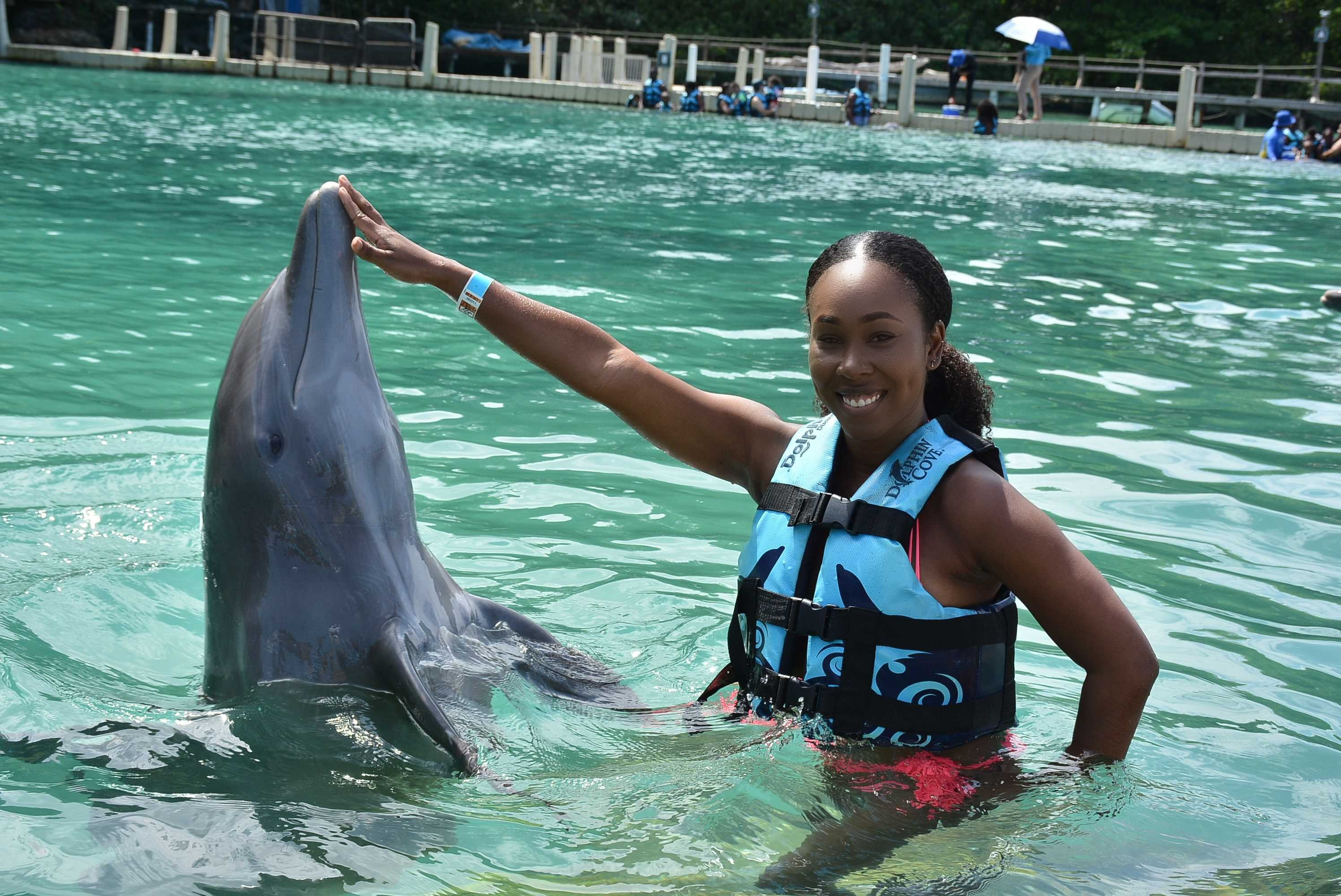 dolphin encounters coupon code